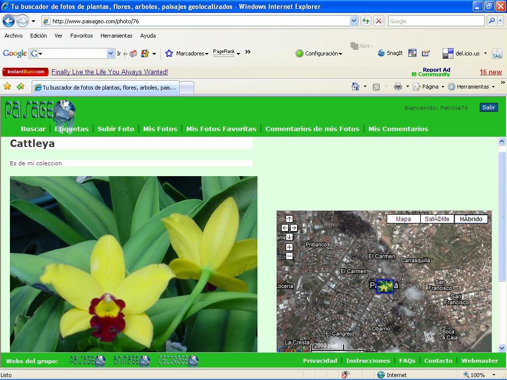 Paisageo.com - Fotos de mis plantas y flores en el mapa del mundo
